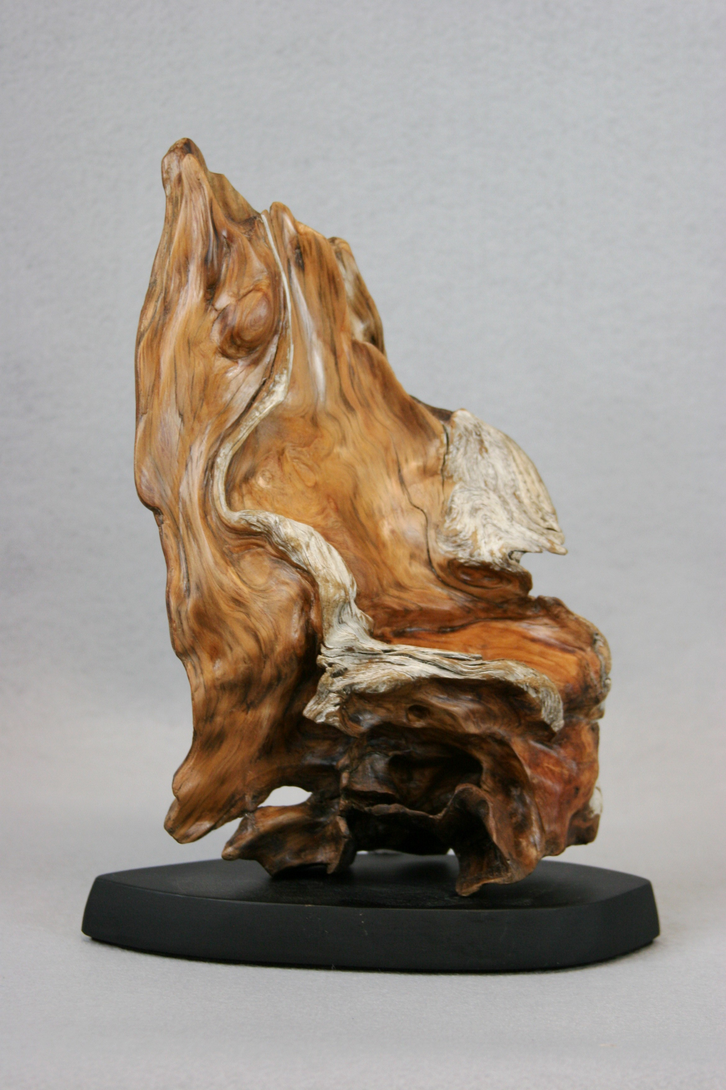 2011 Small Sculptures Northwest Driftwood Artists